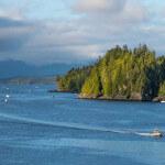 Pacific Gateway Wilderness Lodge BC fishing lodge image25