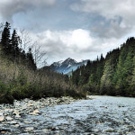 Deep Creek Lodge BC fishing lodge image21