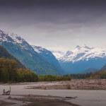 Deep Creek Lodge BC fishing lodge image17