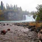 Rainbow King Lodge Alaska fishing lodge image7