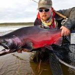Rainbow King Lodge Alaska fishing lodge image46