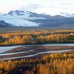 Rainbow King Lodge Alaska fishing lodge image37