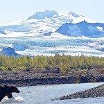 Rainbow King Lodge Alaska fishing lodge image33