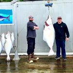 Reel Alaska Fishing Charters Alaska fishing lodge image16