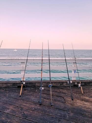 salmon fishing rod