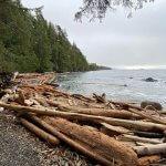 Rugged Point Lodge BC fishing lodge image42