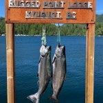 Rugged Point Lodge BC fishing lodge image44