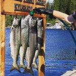 Rugged Point Lodge BC fishing lodge image11