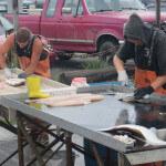 Salmon Catcher Lodge Alaska fishing lodge image20