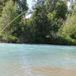 Salmon Catcher Lodge Alaska fishing lodge image21