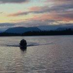 Shearwater Resort & Marina BC fishing lodge image15