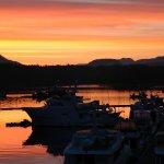 Shearwater Resort & Marina BC fishing lodge image6