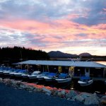 Shearwater Resort & Marina BC fishing lodge image7