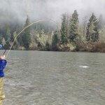 Silversides Fishing Adventures BC fishing lodge image3