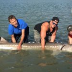 Silversides Fishing Adventures BC fishing lodge image8