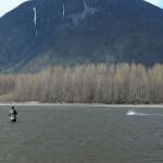 Skeena River Lodge BC fishing lodge image16