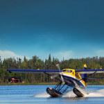 Denise Lake Lodge Alaska fishing lodge image2