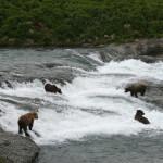 Denise Lake Lodge Alaska fishing lodge image16