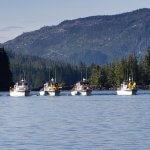 Sportsman's Cove Lodge Alaska fishing lodge image10