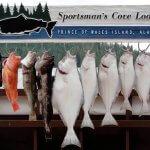 Sportsman's Cove Lodge Alaska fishing lodge image6