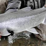 Deep Creek Lodge BC fishing lodge image44