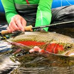 Talaheim Lodge Alaska fishing lodge image37