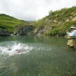 Talaheim Lodge Alaska fishing lodge image22