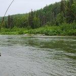 Talaheim Lodge Alaska fishing lodge image14