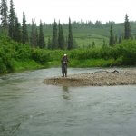 Talaheim Lodge Alaska fishing lodge image12