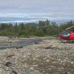 Talaheim Lodge Alaska fishing lodge image3