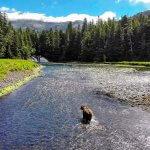 Talon Lodge & Spa Alaska fishing lodge image20