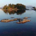 Talon Lodge & Spa Alaska fishing lodge image2