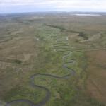 Toman's King Camp Alaska fishing lodge image5
