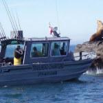 Trailhead Resort & Charters BC fishing lodge image4