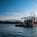 Pacific Tugboat Adventures BC fishing lodge image16