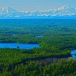Wilderness Place Lodge Alaska fishing lodge image41