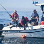 Walters Cove Resort BC fishing lodge image12