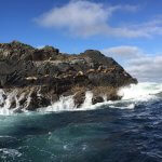 Waterfall Resort Alaska fishing lodge image17