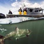 Waterfall Resort Alaska fishing lodge image3
