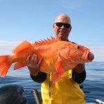 West Wave Fishing BC fishing lodge image9