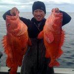 West Wave Fishing BC fishing lodge image11