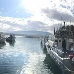 Whaler's Cove Lodge Alaska fishing lodge image10