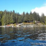 Yes Bay Lodge Alaska fishing lodge image18